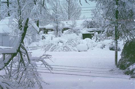 biggest blizzard snowfalls as high as 69 inches were found in parts of
