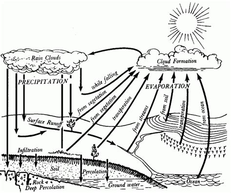 Free Coloring Pages Of Water Cycle Diagram Water Cycle Coloring Page