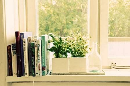 Window Sill Garden Ideas Garden Design Ideas For Small Spaces The Micro Gardener