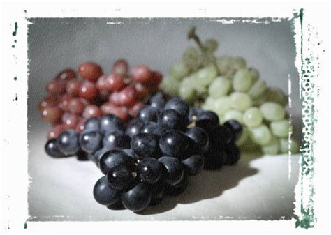 Which Is Better For Munching by Which Do You Prefer Seeded Or Unseeded Grapes Answer