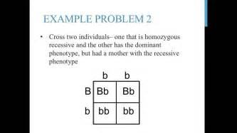 Practice worksheet free printable math worksheets mibb design com