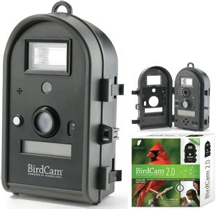 wingscapes birdcam pro wingscapes audubon birdcam review and the birdcam 2 0 review