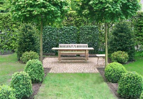 Baum F R Garten 3270 by B 228 Ume F 252 R Garten Schnellwachsende B Ume F R Den Garten