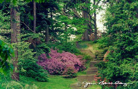 park rochester ny highland park jim barclay photographer rochester ny