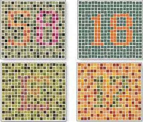 On His Blindness Color Blindness Test Ultimate Edition
