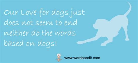 words related to dogs affair with dogs continues wordpandit