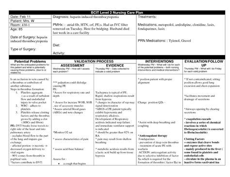 school care plan template atrial fibrillation nursing care plan nursing care plan