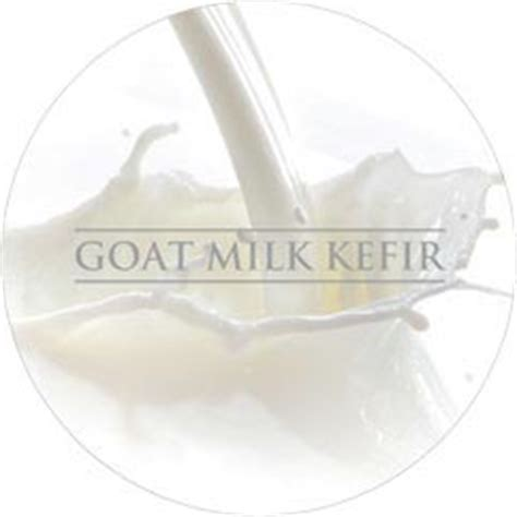 Terlaris Goat Milk Kefir Mask Masker Kefir By Syb Order Segera probiotic skincare ingredients snow oceanic glacial clay goat milk kefir sea kelp