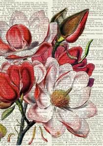 Alice In Wonderland Wall Murals 25 best ideas about flower artwork on pinterest flower
