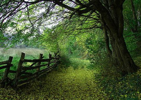country backyard country backyard other nature background wallpapers on
