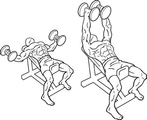 flat bench dumbbell flye straight up chest workout muscles motivation