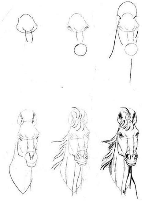 c 243 mo aprender a dibujar animales paso a paso im 225 genes videos las 25 mejores ideas sobre tutoriales de dibujo a l 225 piz