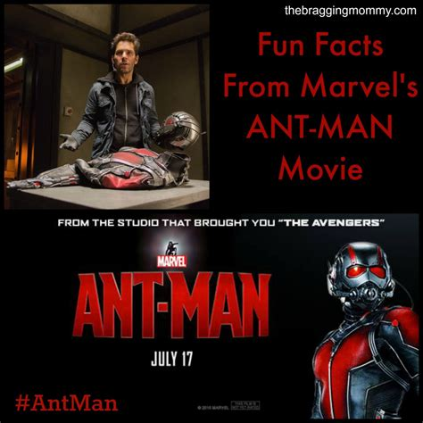 marvel film facts marvel s ant man movie fun facts little ant man video