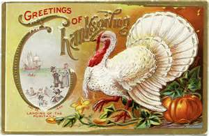 white turkey thanksgiving postcard design shop