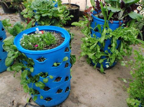 barrel garden gardening ideas