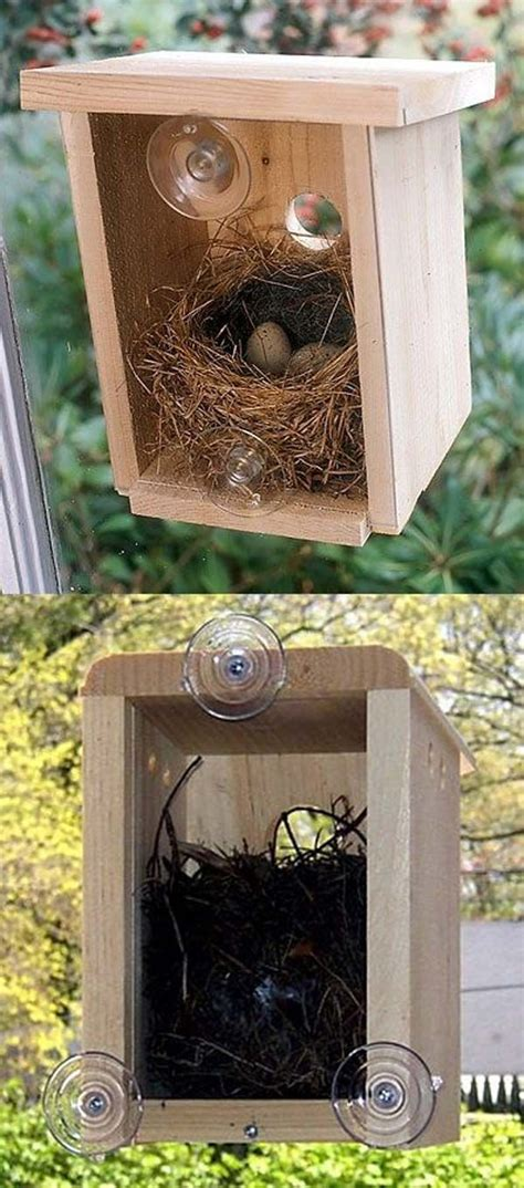 bird house attached to window 25 best ideas about decorative bird houses on pinterest