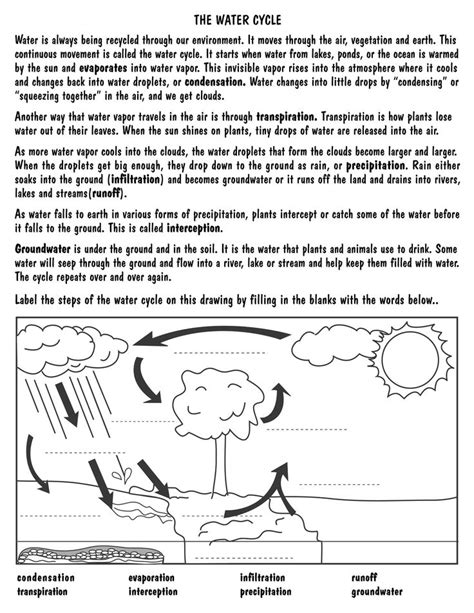 Water Worksheets by Blank Water Cycle Worksheet Search Results Calendar 2015