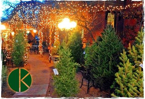 holiday cheer from free wine to christmas trees from