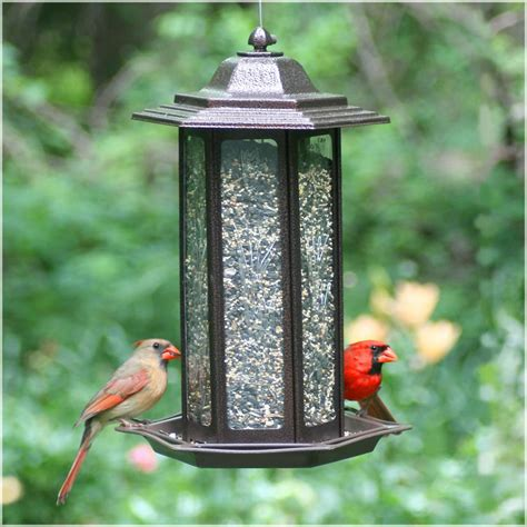 birdscapes tall tulip garden lantern bird feeder