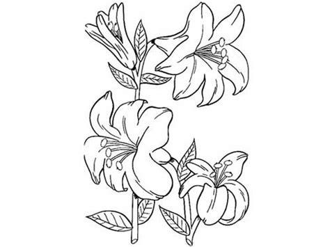 desenho flores 50 desenhos de flores para colorir pintar em casa