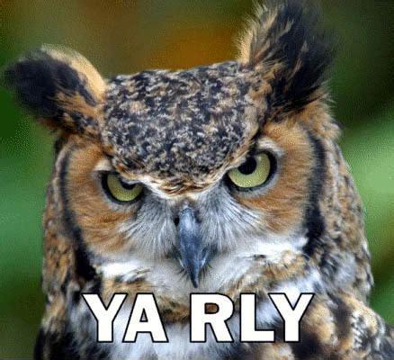 Gw Owl file ya rly jpg