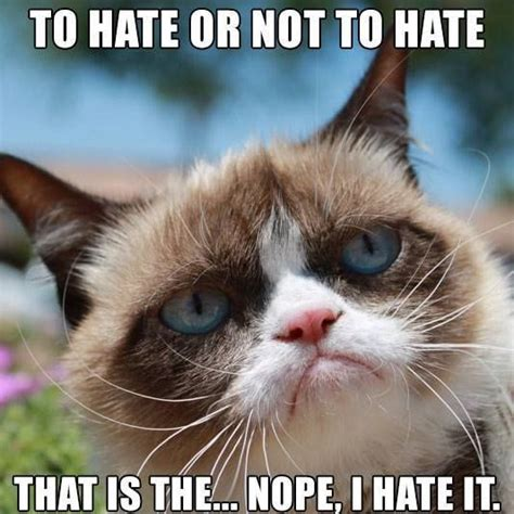 Best Grumpy Cat Meme - grumpy cat gets a movie deal celebrate with these lol
