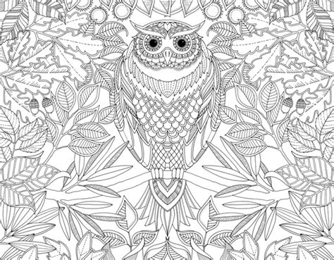 secret garden coloring book at target johanna basford secret garden coloring book for adults