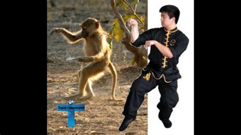 top 10 martial arts top 10 most lethal martial arts most deadly martial