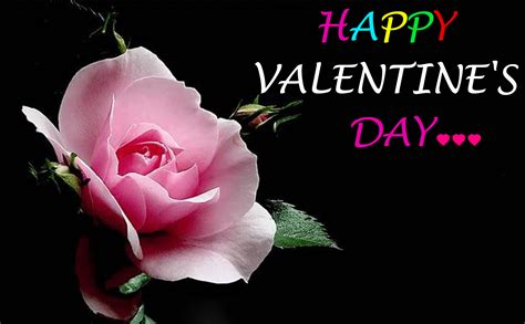free happy valentines day pictures 2016 happy valentines day images free downloads