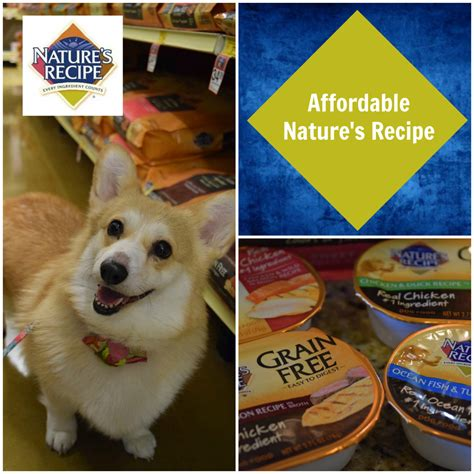 4health large breed puppy food 4health food reviews and recalls in 2018 4health