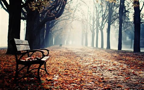 park benches wallpaper and background image 1680x1050