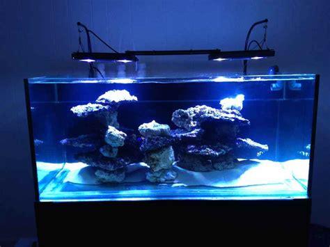 Aquascape Filters Saltwater Aquarium 100 Gallon Aquarium Design Ideas