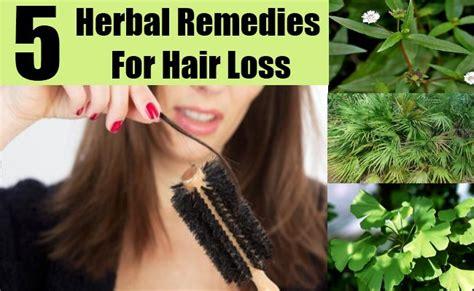 natural treatments for alopecia hair loss 5 hair loss herbal remedies natural treatments and cure
