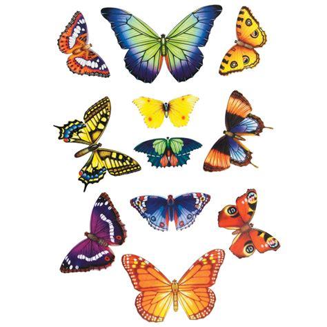 Home Decor Bird Cage by Butterfly Window Stickers Rspb Wild Bird Care Rspb Shop