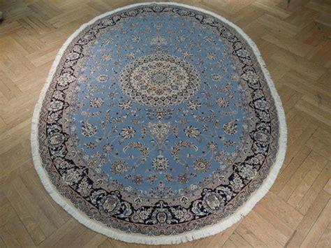 oval rugs 6x9 oval shape 6x9 signed nain blue rug kps500 ebay