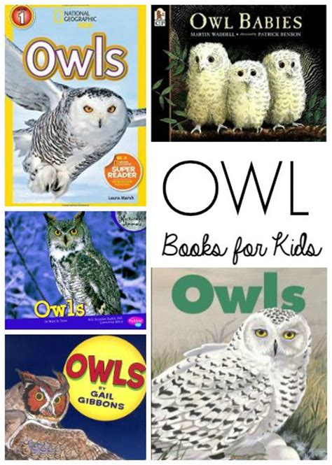 printable owl lapbook owl unit study and lapbook for kids kid and books for kids