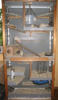 cool multi level diy rat home rat cage rat cage