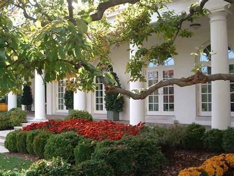 white house rose garden rose garden at the white house