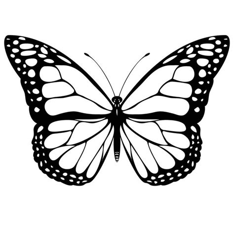 Monarch Butterfly Coloring Pages Free | monarch butterfly free coloring pages coloring pinterest