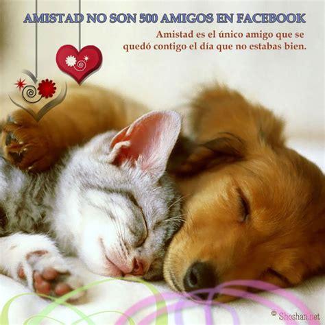 imagenes d amistad gratis imagenes de amistad gratis para enviar img mlp about