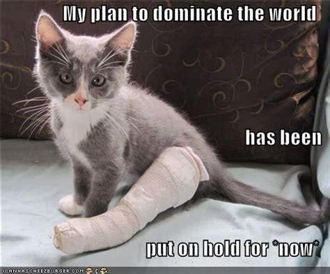 Broken Leg Meme - 12 best injury memes images on pinterest broken leg