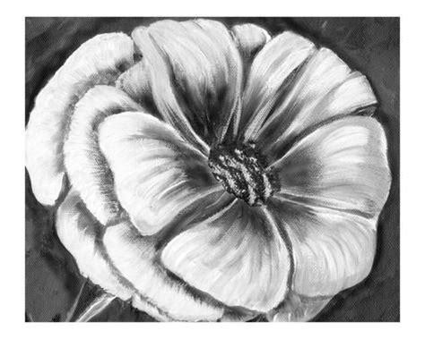 imagenes de rosas en blanco y negro flores en blanco y negro l 225 mina gicl 233 e por kim avent