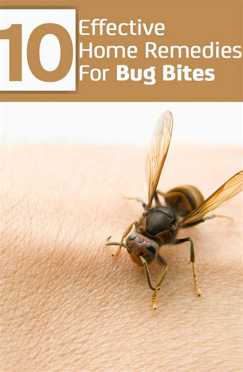 40 best images about remedies and tips on
