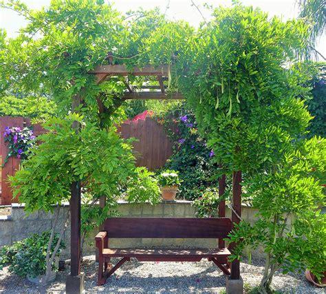 small garden pergola small pergola kits custom made wood garden pergola kits