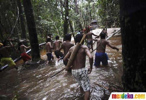 film dokumenter suku pedalaman foto aksi suku pedalaman berburu penambang emas liar di