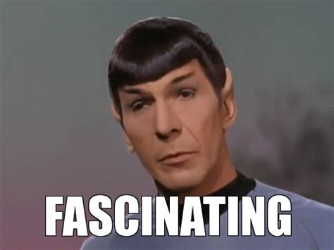 Meme Gif Maker - image tagged in star trek spock made w imgflip meme maker