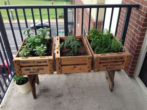 Balcony Herb Garden Ideas Balcony Herb Garden Homegirl Pinterest