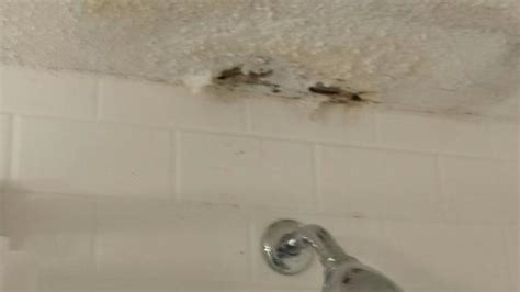 Water Leaking Ceiling Below Bathroom by Water Leak Damage On Bathroom Ceiling Picture Of Four