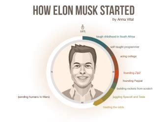 elon musk personality type how bill gates started his life visualized infographic