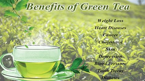 Health Benefits of Green Tea Which you Should Know!!